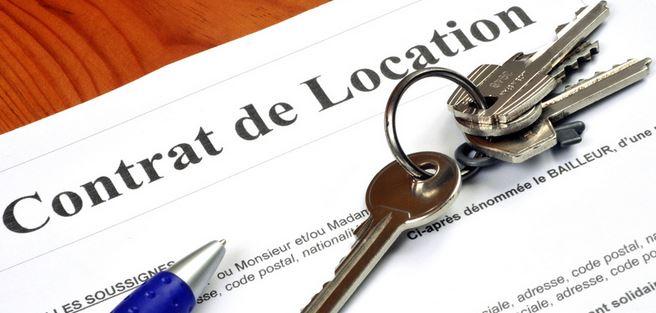 le contrat locatif
