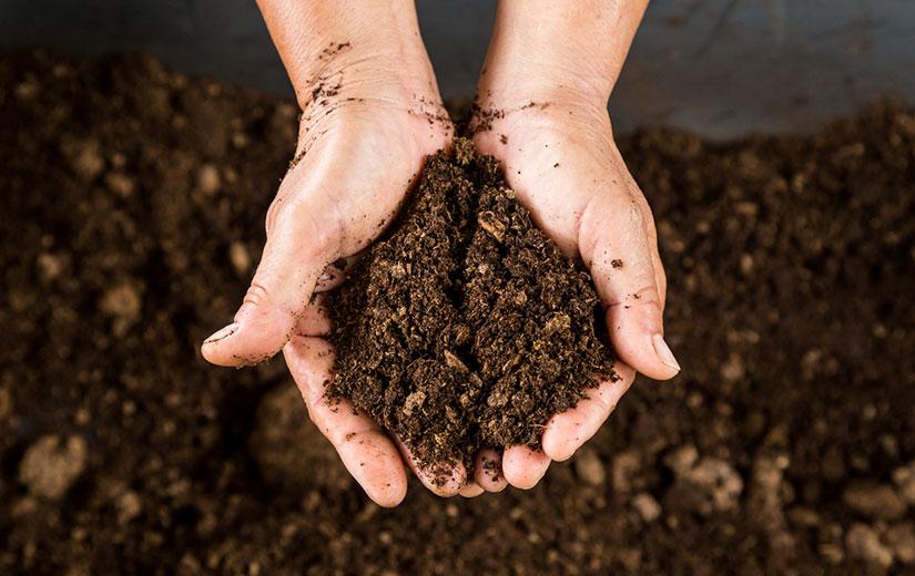Compost De Qualite